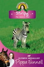 Tilly's Pony Tails 17: Stripy by Pippa Funnell