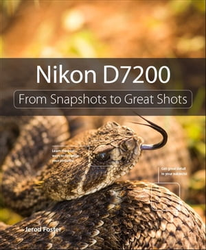 Nikon D7200 From Snapshots to Great Shots