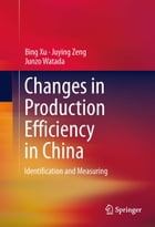 Changes in Production Efficiency in China: Identification and Measuring