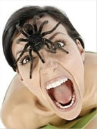 How To Overcome Your Fear of Spiders by Luther Alvarado