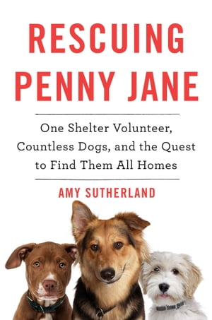 Rescuing Penny Jane One Shelter Volunteer,  Countless Dogs,  and the Quest to Find Them All Homes