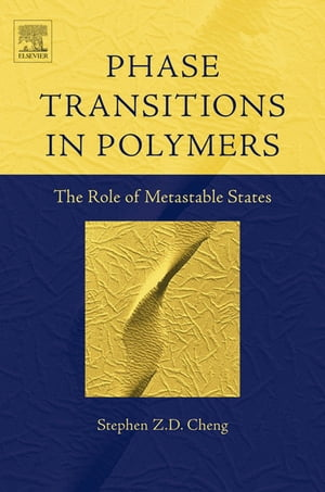 Phase Transitions in Polymers: The Role of Metastable States