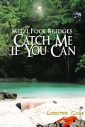 Catch Me If You Can 38f87357-3fce-485e-b365-a252f284cded