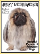 Just Pekingese Photos! Big Book of Pekingese Dog Breed Photographs & Adorable Pictures, Vol. 1 by Big Book of Photos