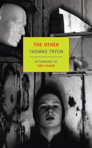 The Other by Dan Chaon