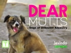 Dear Mutts: Dogs of Unknown Ancestry by Levindo Carneiro