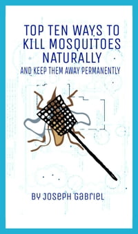 Top Ten Ways To Kill Mosquitoes Naturally And Keep Them Away Permanently