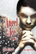 Angel in the Ice, Book 3 by Lisa Grace (Angel Series) by Lisa Grace
