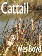 Cattail by Wes Boyd