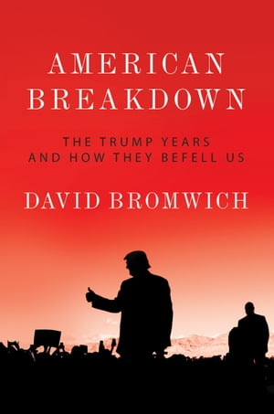American Breakdown: The Trump Years and How They Befell Us by David Bromwich