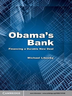 Obama's Bank Financing a Durable New Deal