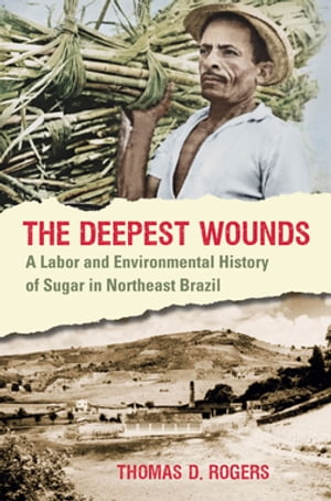 The Deepest Wounds A Labor and Environmental History of Sugar in Northeast Brazil
