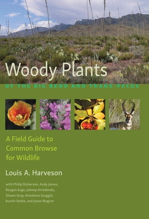 Woody Plants of the Big Bend and Trans-Pecos: A Field Guide to Common Browse for Wildlife