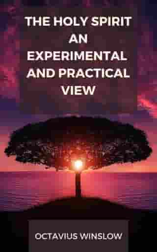 The Holy Spirit, An Experimental And Pratical View by Octavius Winslow