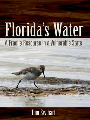 Florida's Water A Fragile Resource in a Vulnerable State