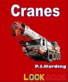 Cranes: A LOOK BOOK Easy Reader by P.J. Harding