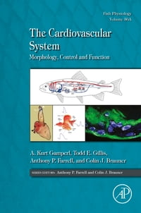 The Cardiovascular System: Morphology, Control and Function