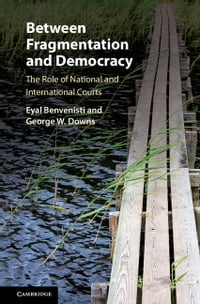 Between Fragmentation and Democracy: The Role of National and International Courts