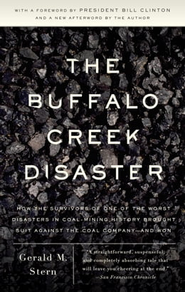 Book The Buffalo Creek Disaster: How the survivors of one of the worst disasters in coal-mining history… by Gerald M. Stern