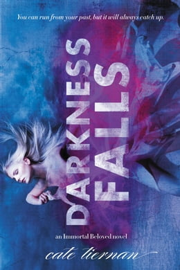 Book Darkness Falls by Cate Tiernan