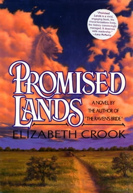 Book Promised Lands: A NOVEL OF THE TEXAS REB by Elizabeth Crook