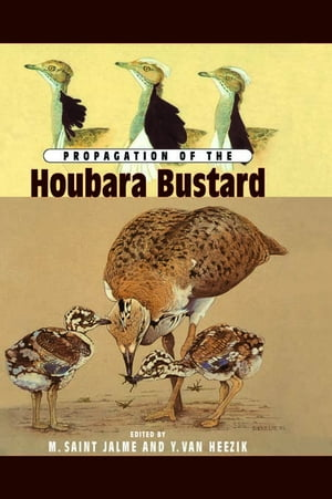 Propagation Of The Houbara Busta