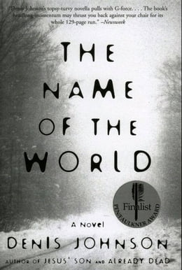 Book The Name of the World: A Novel by Denis Johnson