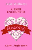 A Brief Encounter: A Love…Maybe Valentine eShort by Julia Williams