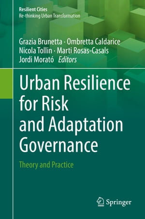Urban Resilience for Risk and Adaptation Governance: Theory and Practice
