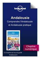 Andalousie - Comprendre l'Andalousie et Andalousie pratique by Lonely Planet