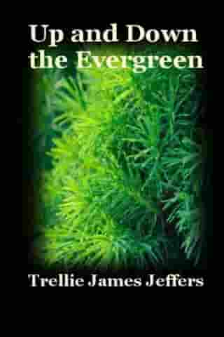 Up and Down The Evergreen
