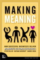 Making Meaning: How Successful Businesses Deliver Meaningful Customer Experiences: How Successful Businesses Deliver Meaningful Customer Experiences by Steve Diller