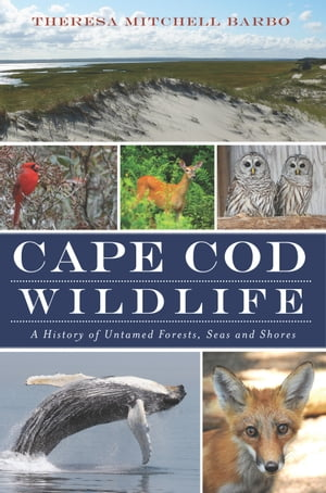 Cape Cod Wildlife: A History of Untamed Forests, Seas and Shores