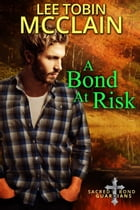 A Bond At Risk: Sacred Bond Guardians Book Two by Lee Tobin McClain