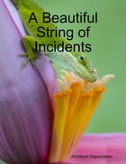 A Beautiful String of Incidents
