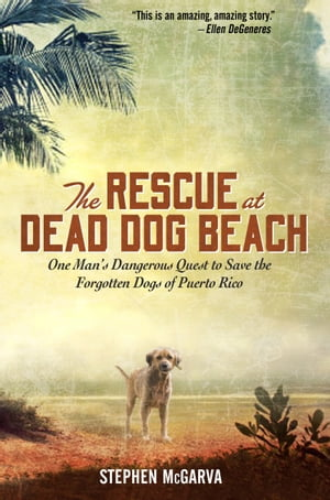 The Rescue at Dead Dog Beach One Man's Quest to Find a Home For the World's Forgotten Animals