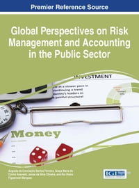 Global Perspectives on Risk Management and Accounting in the Public Sector