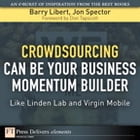Crowdsourcing Can Be Your Business Momentum Builder: Like Linden Lab and Virgin Mobile by Barry Libert