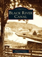 Black River Canal by Edward P. Fynmore