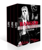 Banged by the Bikers - The Collection by Lolita Minx