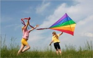 A Beginners Guide to Kite Flying and Building Kites by Martin Quinn