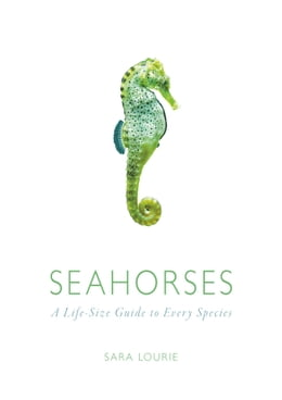 Book Seahorses: A Life-Size Guide to Every Species by Sara A. Lourie