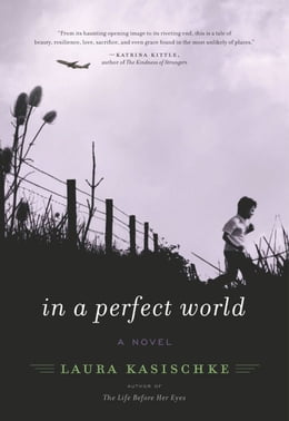 Book In a Perfect World: A Novel by Laura Kasischke