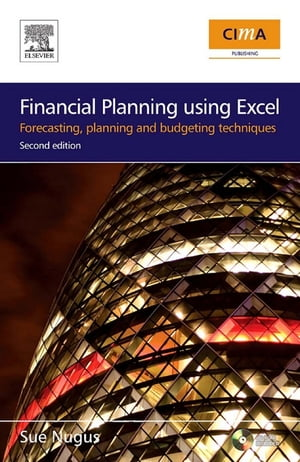 Financial Planning Using Excel: Forecasting, Planning and Budgeting Techniques