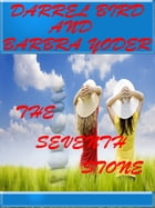The Seventh Stone by Darrel Bird