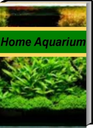 Home Aquarium An Introductory Guide for Learning About Aquarium Catfish,  Wall Mounted Aquarium,  Aquarium Supplies,  Aquarium Setup