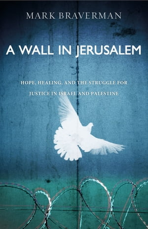 A Wall in Jerusalem Hope,  Healing,  and the Struggle for Justice in Israel and Palestine