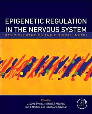 Epigenetic Regulation in the Nervous System Basic Mechanisms and Clinical Impact