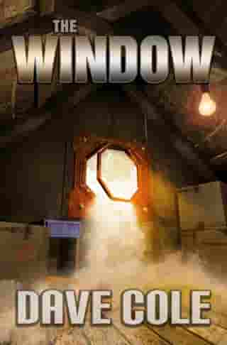 The Window by Dave Cole