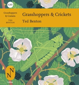 Book Grasshoppers and Crickets (Collins New Naturalist Library, Book 120) by Ted Benton